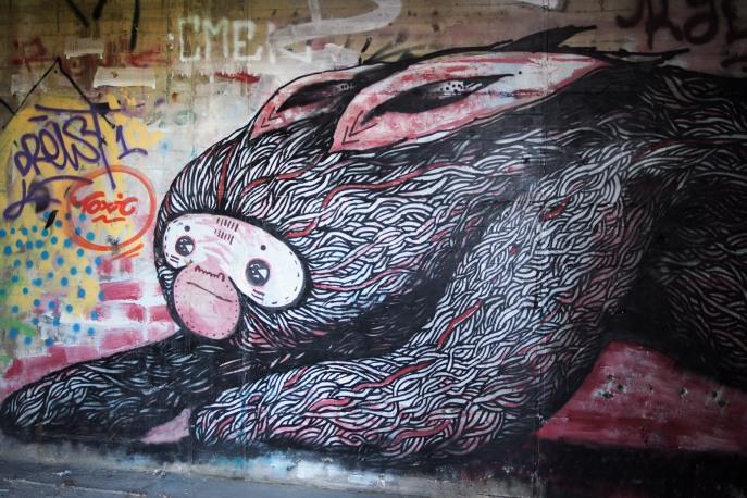 monkey rabbit