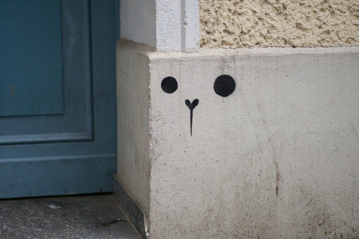minimal bear