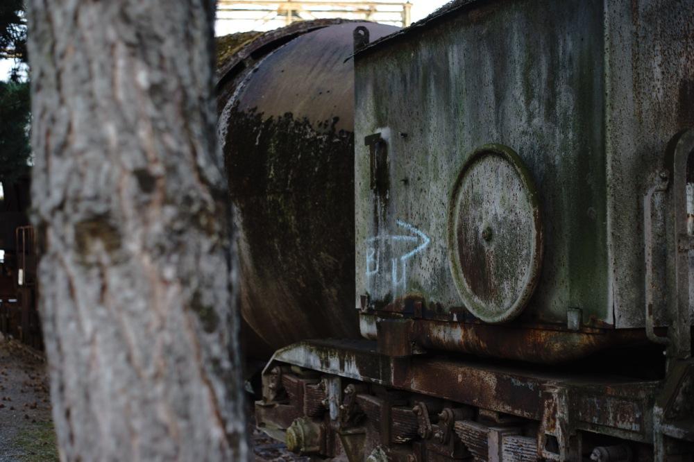 mossy rust